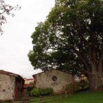 Museo Etnográfico del oriente de Asturis