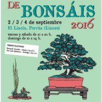 Exposición de Bonsái – 2,3 y 4 de septiembre