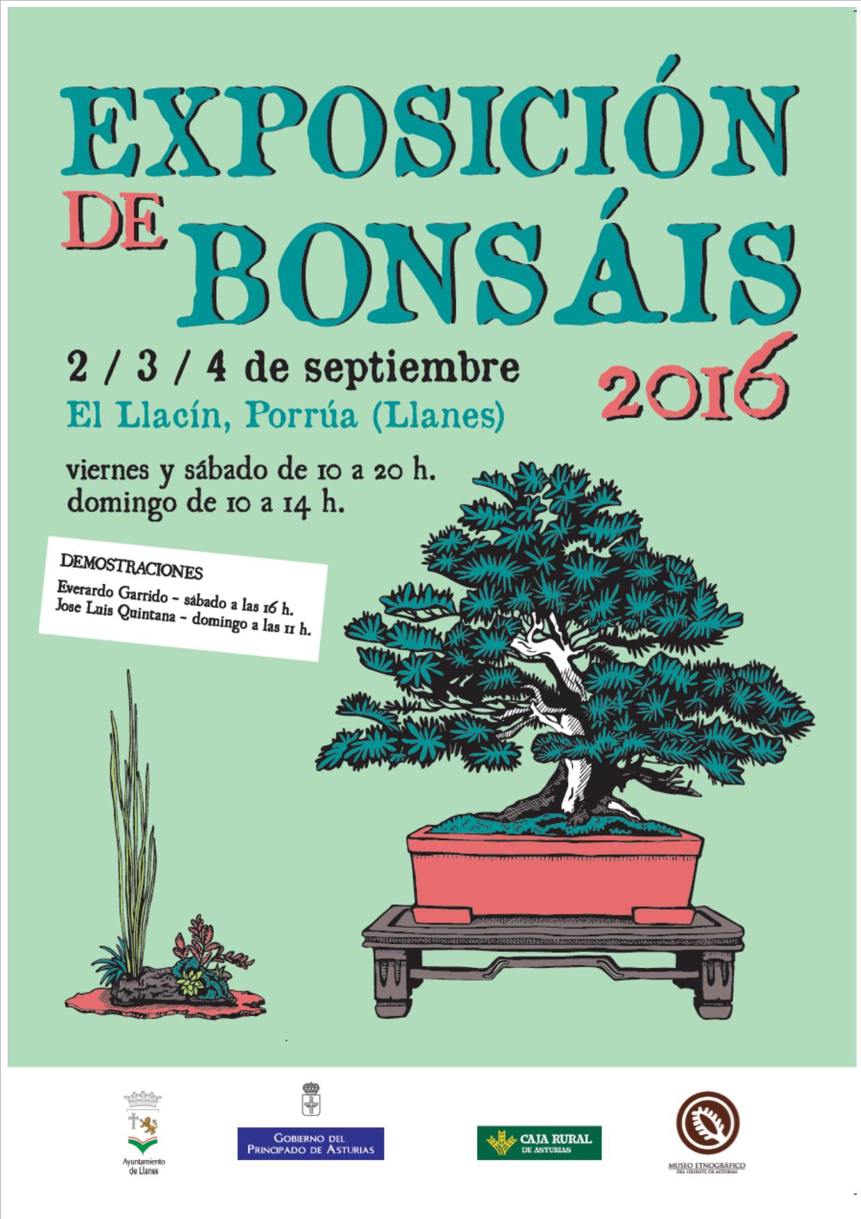 cartel bonsai 16