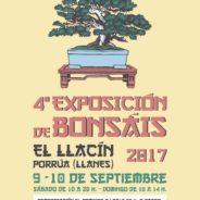 4ª Exposición de Bonsáis – 9 y 10 septiembre